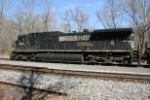 NS 8854 tied down east end CORN