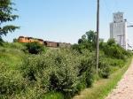 Summertime on the Ravenna Sub