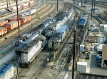 Amtrak Locomotives