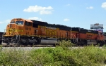 BNSF 9919 & 9362