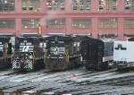 NS 7508 & NS 6184