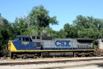 CSX C40-8W 7364 is the sixth unit on this eastbound.