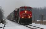 CN 501
