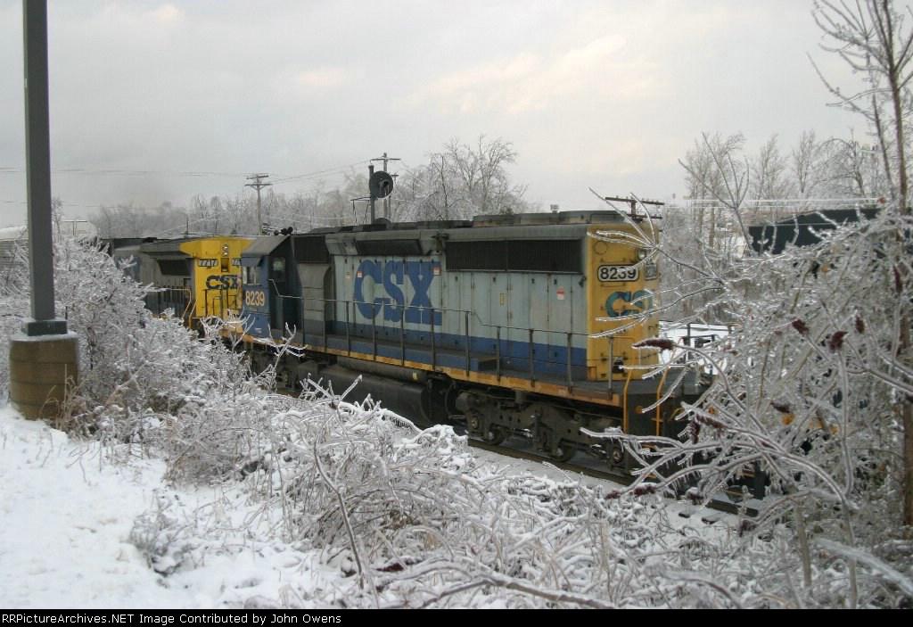 CSX 8239/CSXT Q201