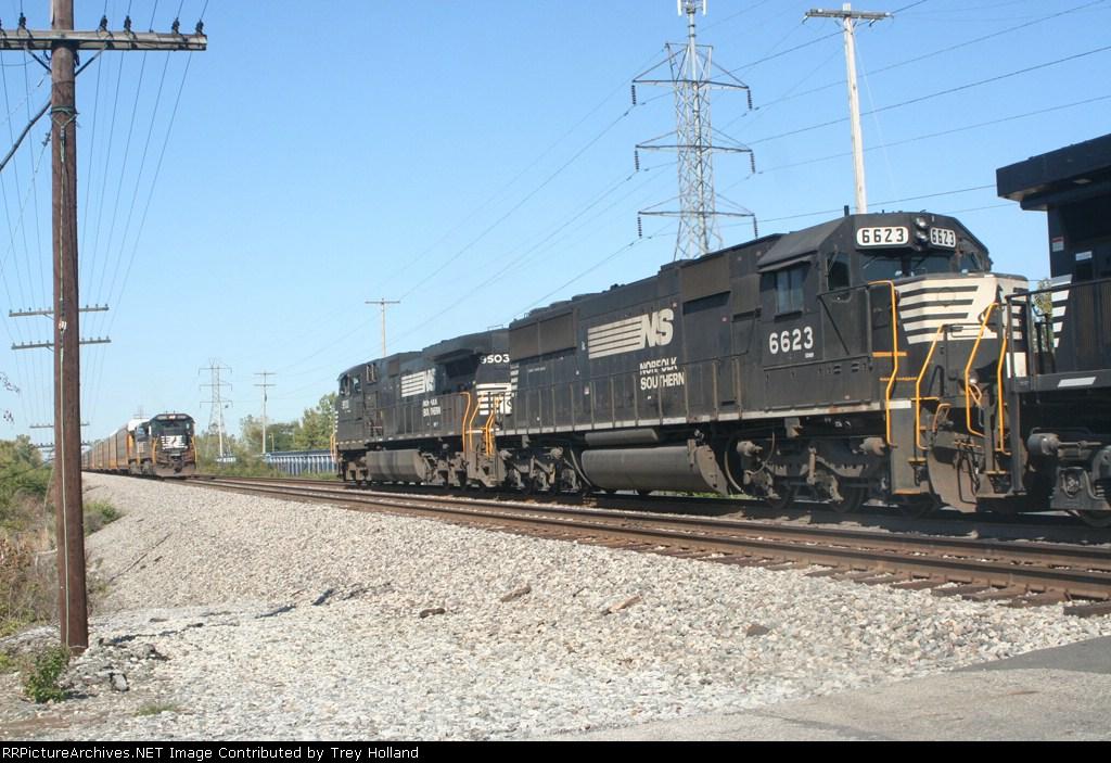 NS 9503