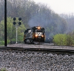 NS 8648