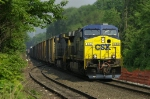 CSX Q41023