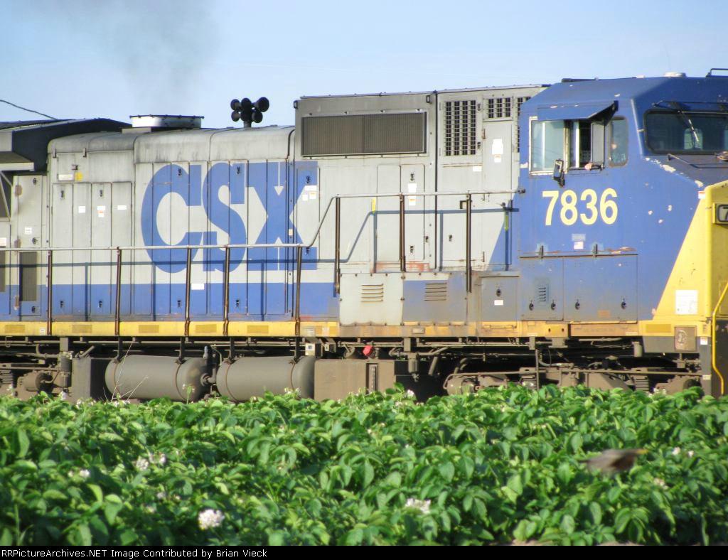 CSX 7836