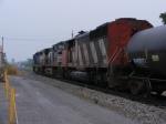 CN 5558