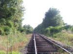 Unknown Railroad In Henry County, Alabama