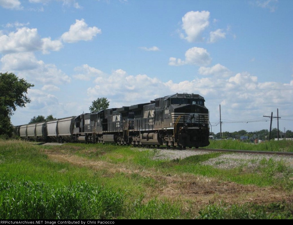 Parked NS Grain Train