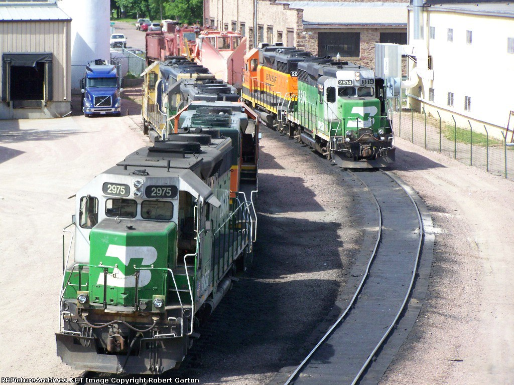 Geeps From a Different Angle