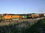 BNSF 4445 leads POWERFUL consist