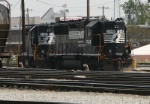 NS 3287 Hangs Out In The Yard