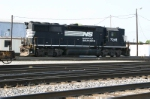 NS 7048 Hangs Out In Pamona Yard