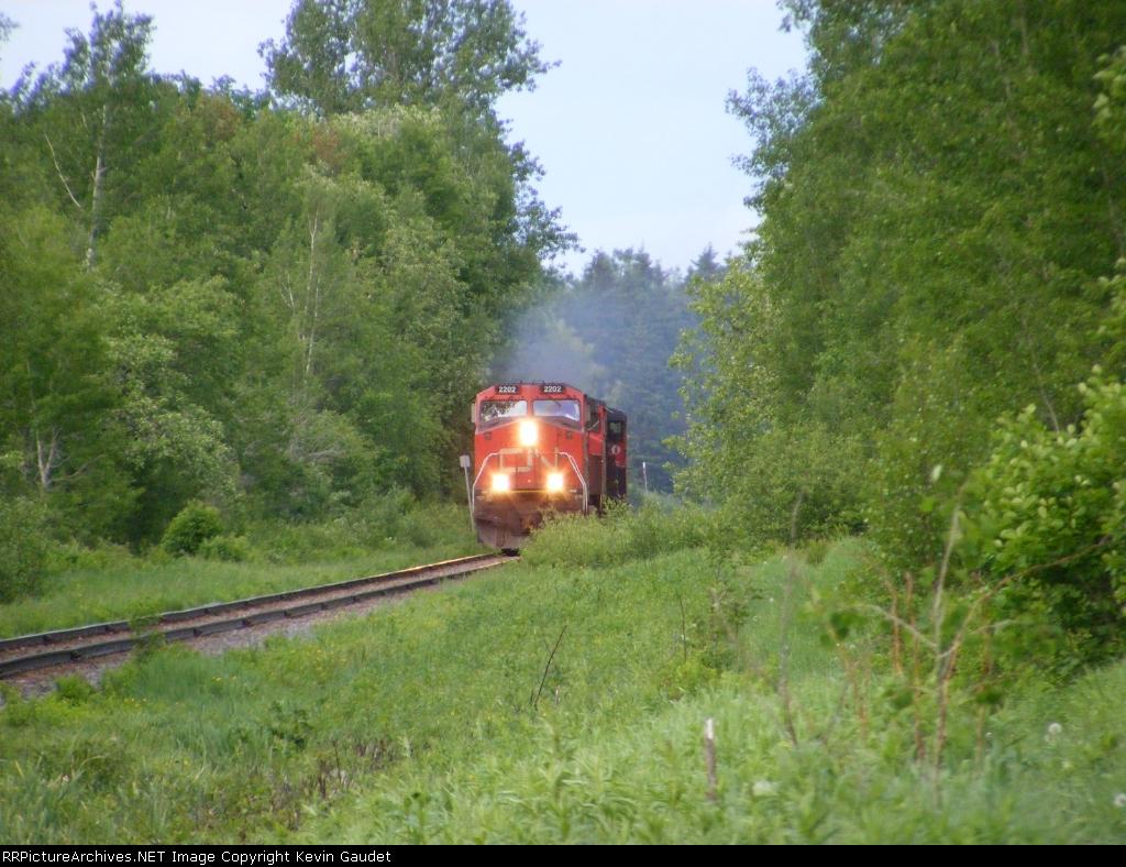 CN 594 east of Salisbury