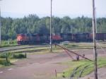 CN 305 at Gort
