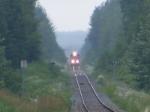 CN A40617-08 at Salisbury