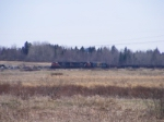 CN 407 scenic shot at Memramcook