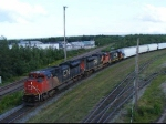 CN 407 at Gort