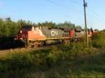 CN 406 at River Glade