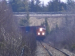 CN 569 west of Lutesville