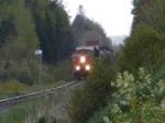CN 406 east of Salisbury