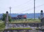 CN 407 at Sackville east