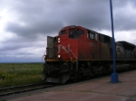 CN 8808