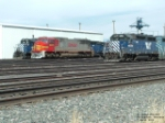 Pair of MRL locomotives and BNSF 8295
