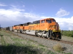 BNSF 9229 Leads H3's through Colo. Spgs.
