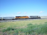 BNSF 9693 and 5865 wb with empties south of