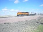 BNSF 9177--More eb coal