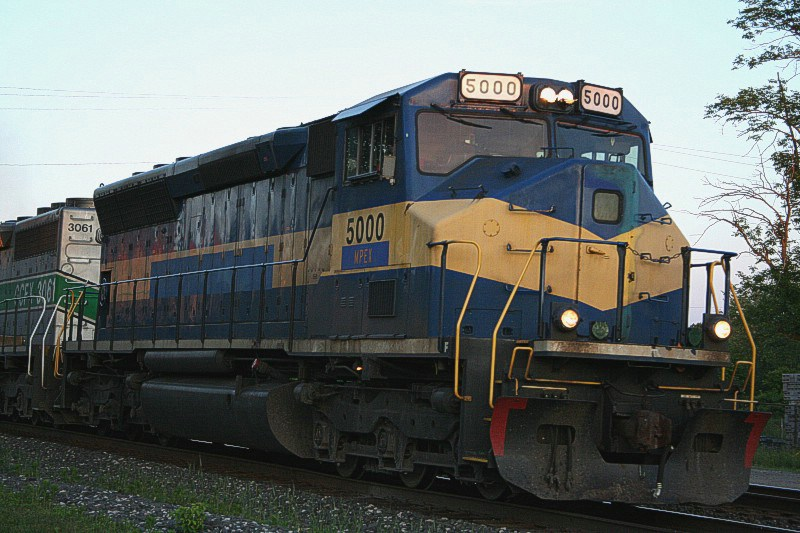 MPEX 5000