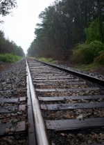 Begining of One Hundred Miles of Straight Track-Leland, NC
