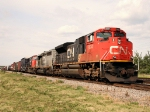 CN 8834