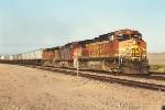 Westbound Piggyback Train