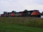 CN 5605