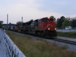 CN 8002