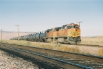 BNSF 5029 with a tank train