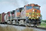 BNSF C44-9W #4391 leads a southbound grain train