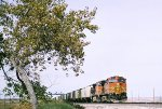 BNSF C44-9W #5456 leads an eastbound grain train at Mesa Rd.