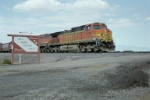 BNSF 4391 Leads a southbound past the Ladd S. Gordon Waterfowl Complex