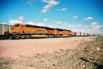BNSF 9399 and BNSF 5954 lead a string of wb empty CPOX coal hoppers