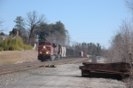 CP 8556 leads NS 186