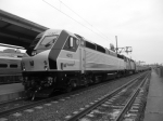 NJT 4010 NJT 4127 Double Headed