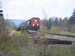 CN 405 at Penobsquis