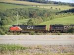 CN 406 near Sussex