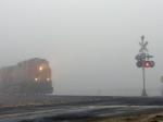 Foggy morning at Poplar Road