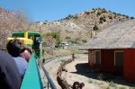 View from the Virginia & Truckee Railroad Tourist Train